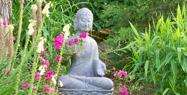 Buddha with heirloom roses. North Garden - Stone House